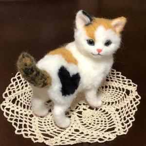 ♪三毛猫が誕生しました