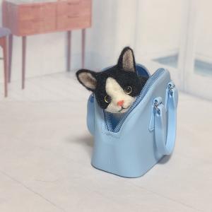 ♪バックに入ったハチワレ猫