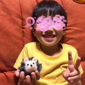 ♪お孫ちゃんのハリネズミ