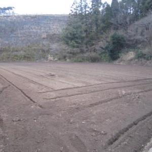 蕎麦畑の耕起