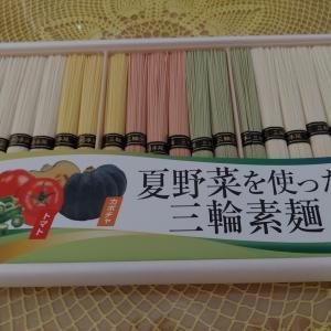 ✩カラフルな素麺✩