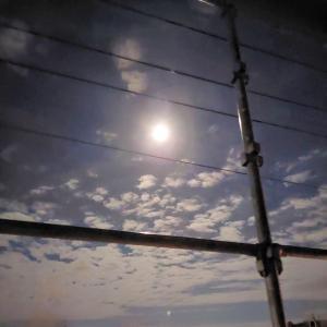 ✩お月様見えました✩