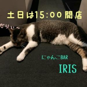 仙台東口イリス2021.1/30 にゃんこBAR