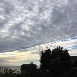一日中曇り空でした!
