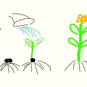 植物アスリート農法基本