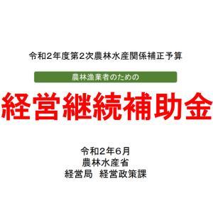 経営継続補助金 農水省