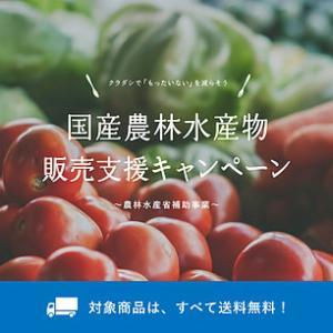 野菜ネット販売増加助成金も