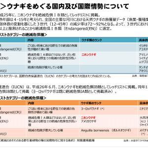東京農業大学うなぎ
