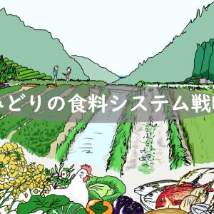 みどりの食料システム戦略/農水省