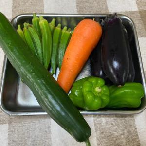 今年も‼︎生野菜でアンチエイジング〜(`・∀・´)