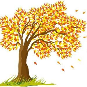 「秋の風」