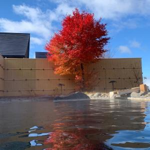 満天の湯 (日帰り温泉施設) (2019年11月)