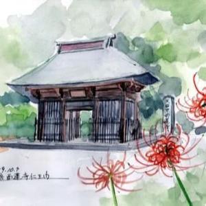 彼岸花の西連寺(2019/10/9)