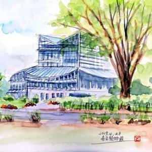 県植物園(2019/4/29)