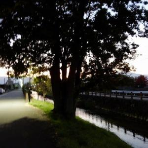 石和温泉 朝食前の散歩