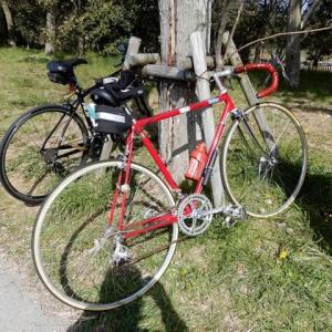 浜名湖サイクリング ガーデンパークから舘山寺へ