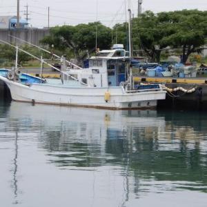 吉田港をぶらり散歩