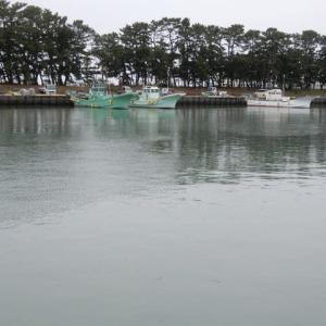 吉田港と海岸