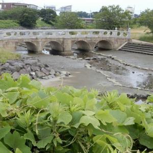 吉田町 湯日川親水公園の橋