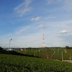青空散歩 2