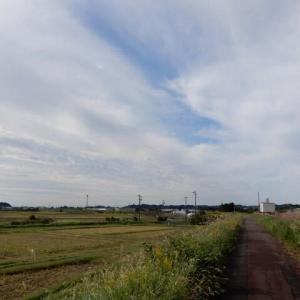 秋の菊川サイクリング