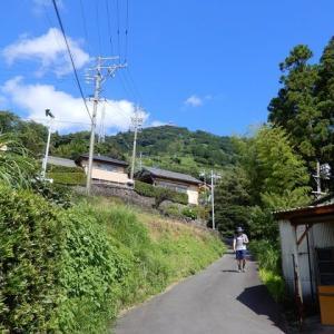 粟ヶ岳散歩