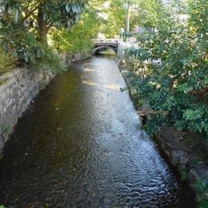 京都の旅 秋 五条界隈へ・・・