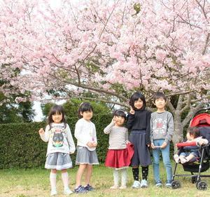 横須賀城跡の桜