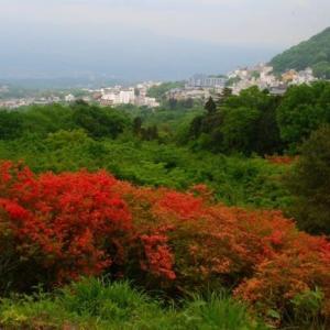 ツツジ咲く伊香保・長峰公園