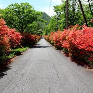 (2)榛名湖への紅い道