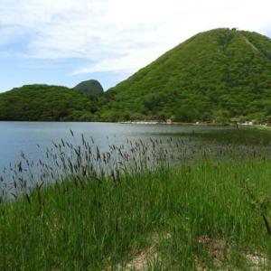 (3)ツツジを堪能し榛名湖へ