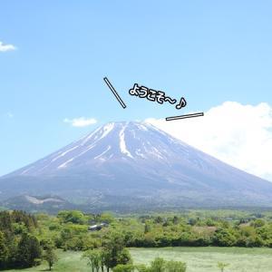 寅ちゃん、富士山を見に行く♪