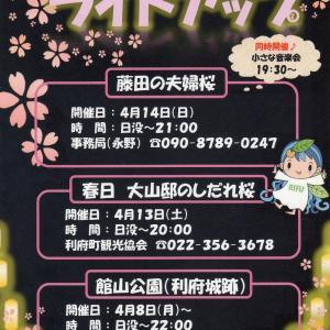 『藤田の夫婦桜 小さな音楽会』へHIROMIが出演いたします。
