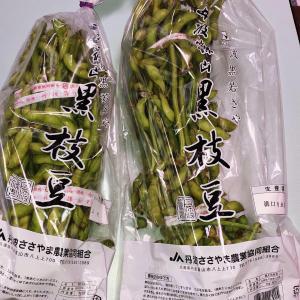 期間限定  丹波黒枝豆
