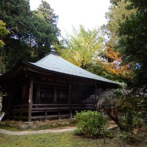 大阪岩湧山  ・ 茅の森