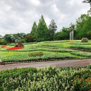 花の文化園にこんなところが