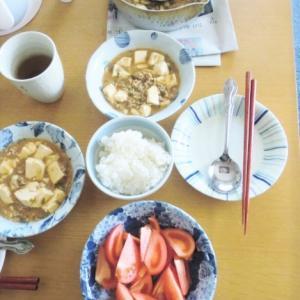 実家に麻婆豆腐を持っていくときの工夫と、「インスタ映え」しない食卓