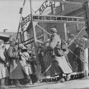 1945年1月27日:ソ連赤軍アウシュビッツ解放