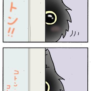 気になる猫とロシアン!!