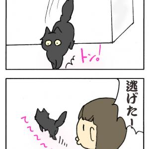 ごまかすんだじぇ〜