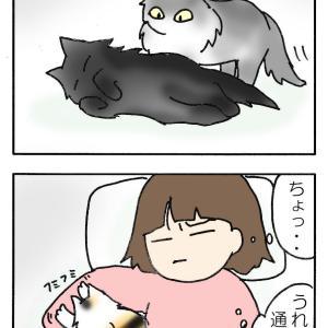 寝返り禁止令
