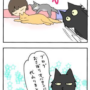 """""""にゃんモデルナンバー36ぴのたん"""""""