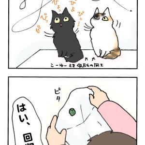 オイラにちょ〜だいっ!