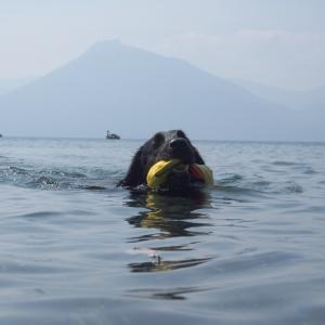 暑い週末の水遊び②