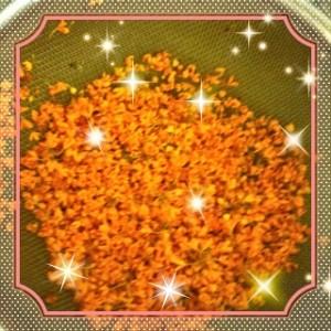 今日は秋分の日