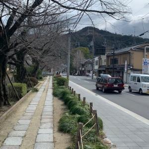 のほほ~んと京都ぶらり散策
