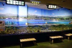 魚津水族館 その1