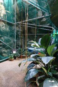 新潟県立植物園 その2