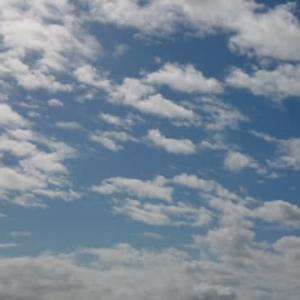 今日の空と出会い~そして猫ちゃんと