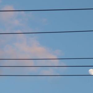 五線譜の月